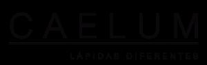 logo_negro copia